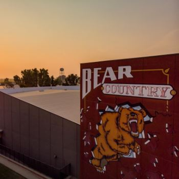 View of Bear Country mural at sunset